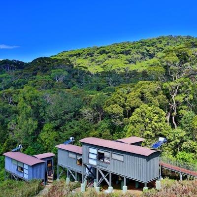 Rain forest Eco Lodge