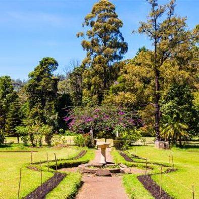 Victoria Park Sri Lanka